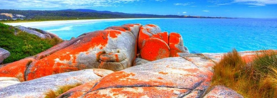 Binalong-Bay-Bay-of-Fires-Tasmanie
