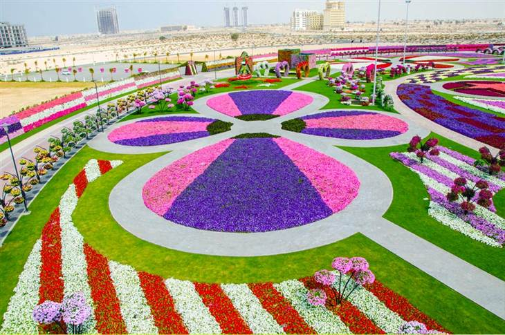 Dubaï-Miracle-Jardin-Dubaï
