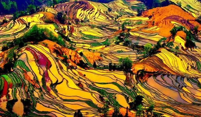 Rizières-en-terrasses-Guilin-Longji-Chine-640x480