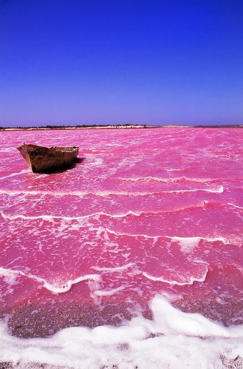 lac rose senegal