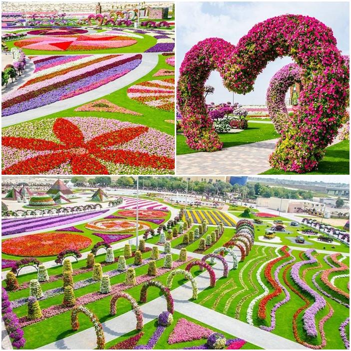 À Dubaï, aux Emirats arabes unis, le jardin Miracle.