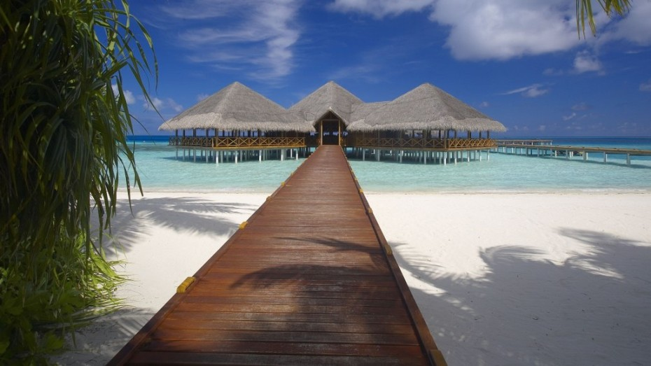 Maldives : Surf et plongée au Medhufushi Island Resort