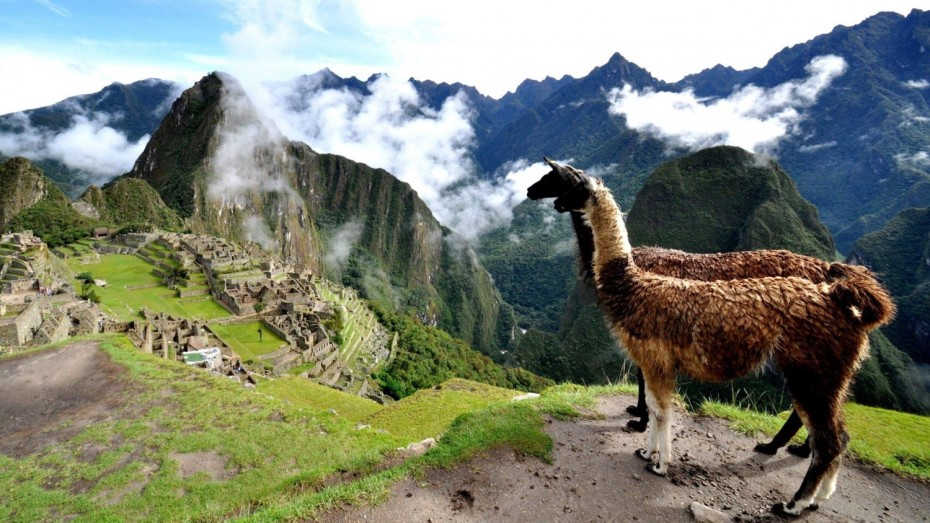 Du Canyon de Colca au Machu Picchu: Road-trip au cœur du Pérou