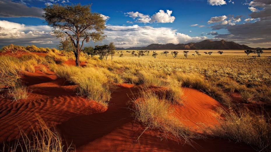 Road trip de l'Afrique du Sud à la Namibie