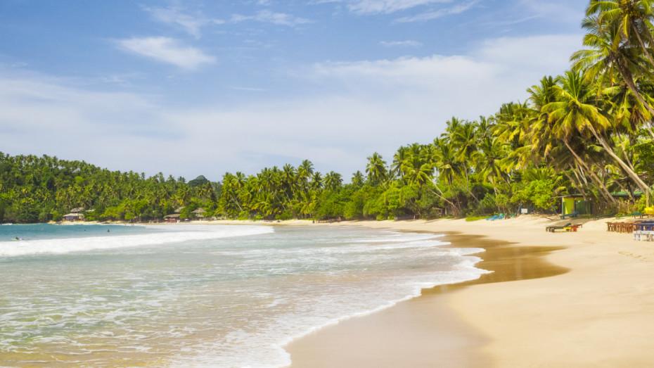 Culture, plage et thé au Sri Lanka