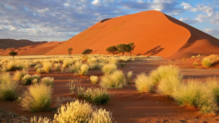 Namibie : Safari et désert en avion-taxi
