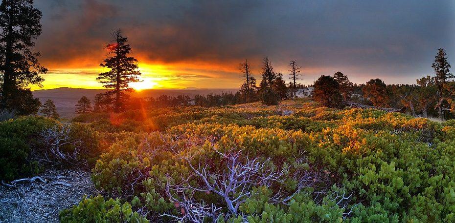 Grands espaces et parc nationaux au cœur des USA